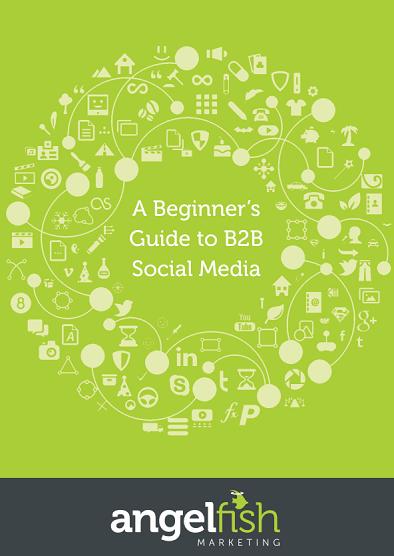b2b social media angelfish marketing cover