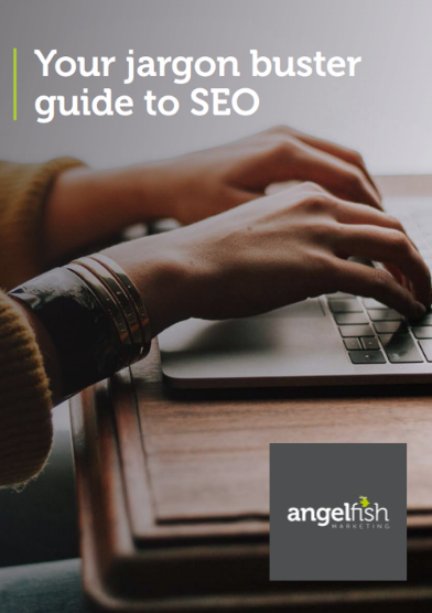 seo jargon busting cover angelfish marketing-1