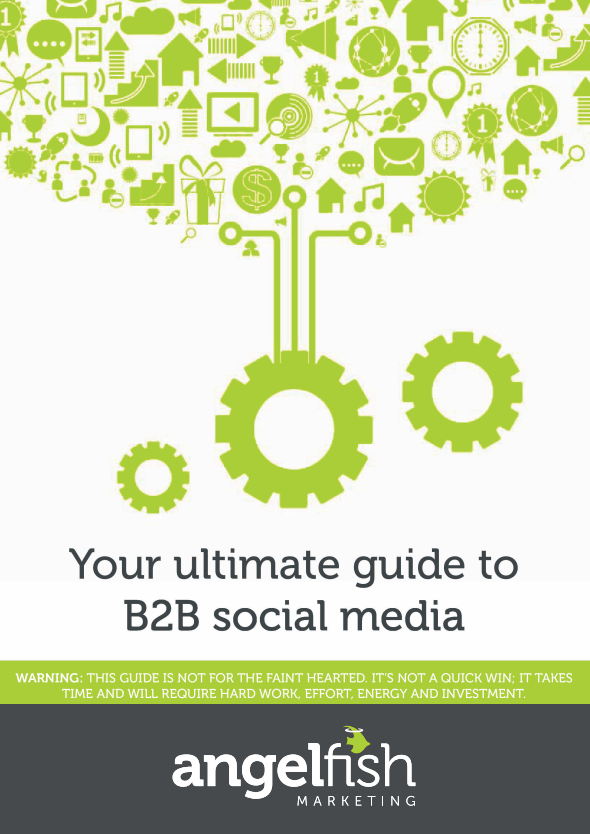 ultimate b2b social media guide cover angelfish marketing